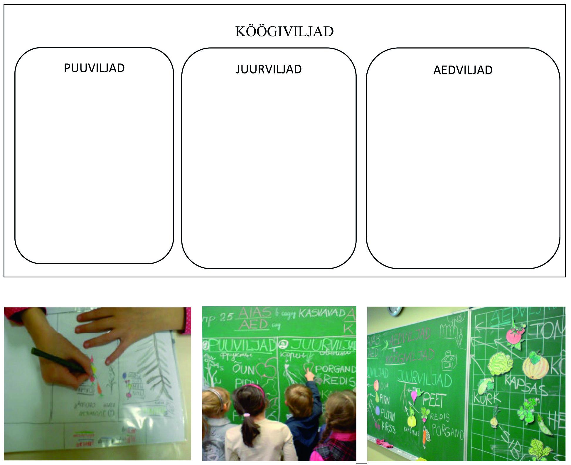 Microsoft Word - Eestikeelne aineõpe Tallinna Humanitaargümnaasi